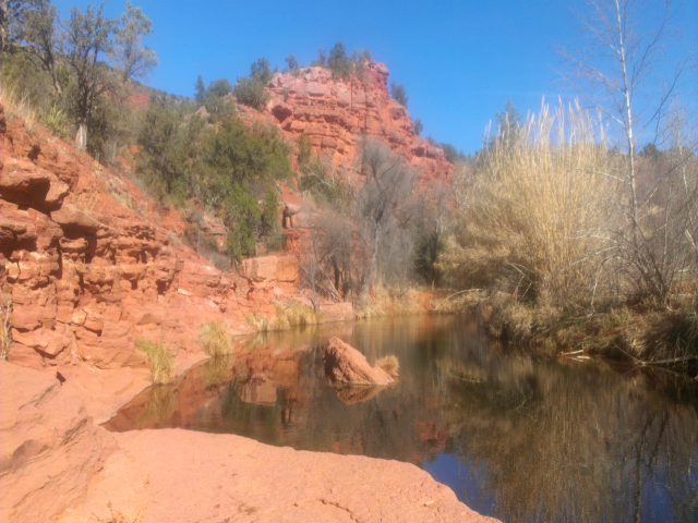 Sedona creek swimming tour