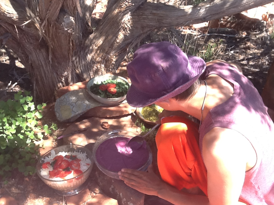 Healthy food picnic in Sedona