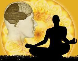 brain and siluet